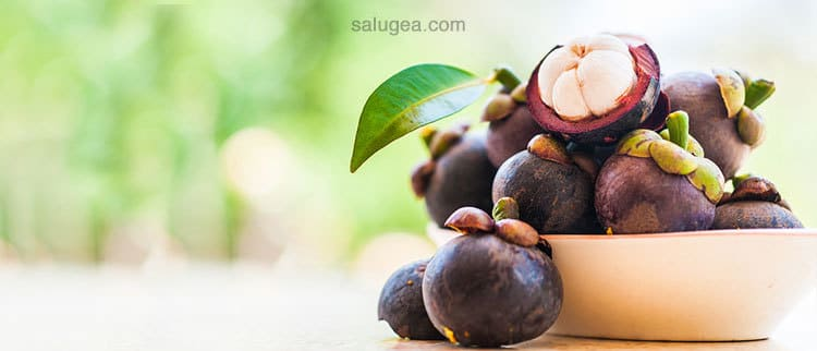 frutto Mangostano