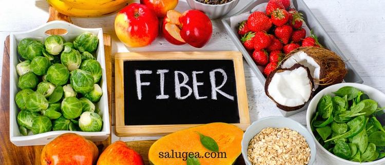 alimenti ricchi di fibre blog