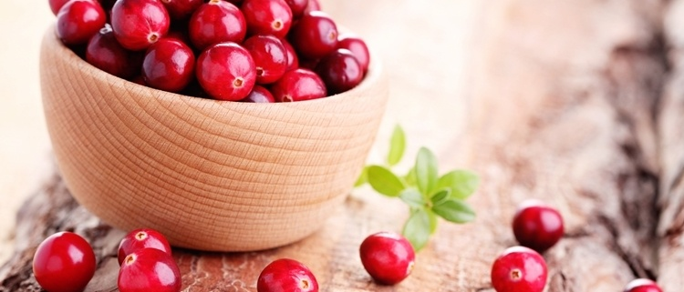 proprietà e utilizzi del Cranberry